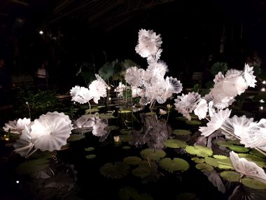 Ethereal White Persian Pond