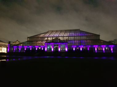 Temperate House Laser Show