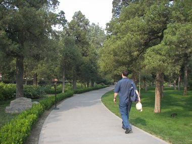 Walking Through the Park (SW)