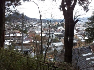 View of Takayama Through the Trees