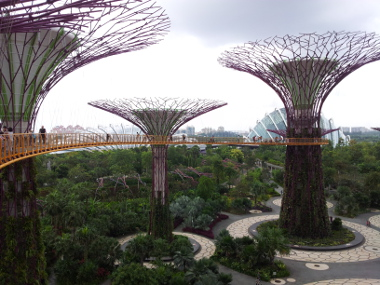 Gardens by the Bay (Supertree Grove Aerial Walkway)