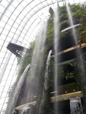 Gardens by the Bay (Cloud Forest)
