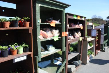 Local produce for sale beside the road in honesty boxes